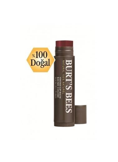 Burt's Bees Tinted Lip Balm - %100 Doğal Renkli Dudak Kremi Red Dahlia (vişne) 4.25 gr Renksiz